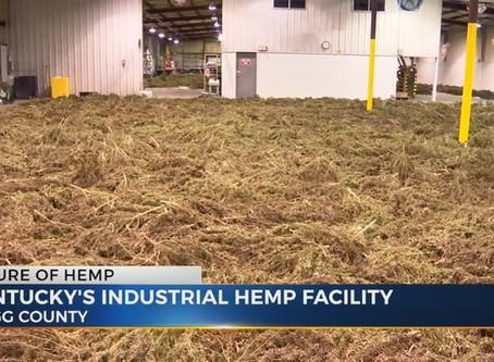 Hemp Processing Plants