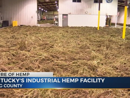 Hemp Processing Plants