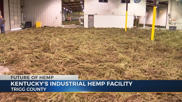 Kentucky's Industrial Hemp Facility, Image supplied by WKRN.com