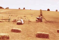 ORFC Funraising Hay 1970's.jpeg