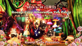 6/30 Koenji Cave Afternoon Tea Party *.゚わんちゃんと一緒 午後のお茶会*.゚