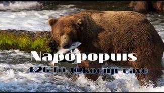 4/26 Napopopuis
