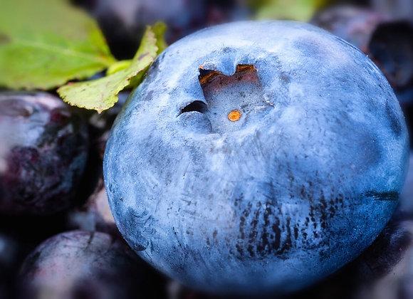 Blueberry -Fragrance Oil