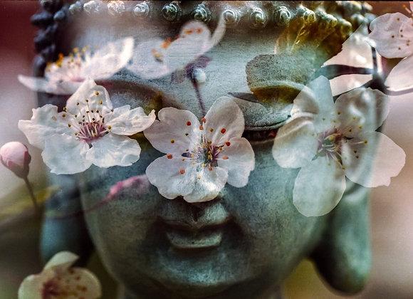 Oriental Flowers -Fragrance Oil