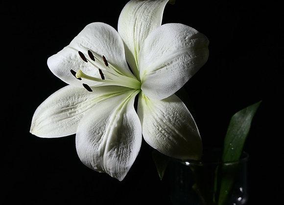 White Lily Essential Perfume