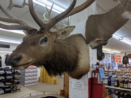 Stark's Prairie du Chien Elk