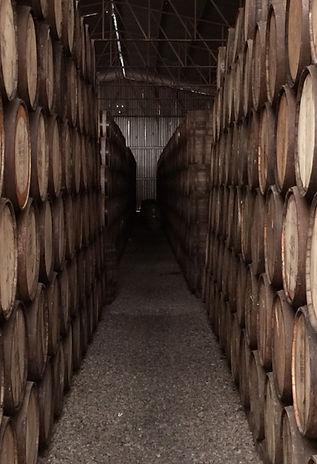 Wine Barrels at Lubben Vineyard in Mario