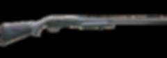 shotgun