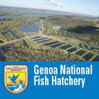 Genoa Fish Hatchery.jpg