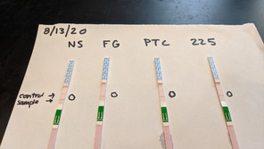 North Pond Bloom and Toxin Testing Update