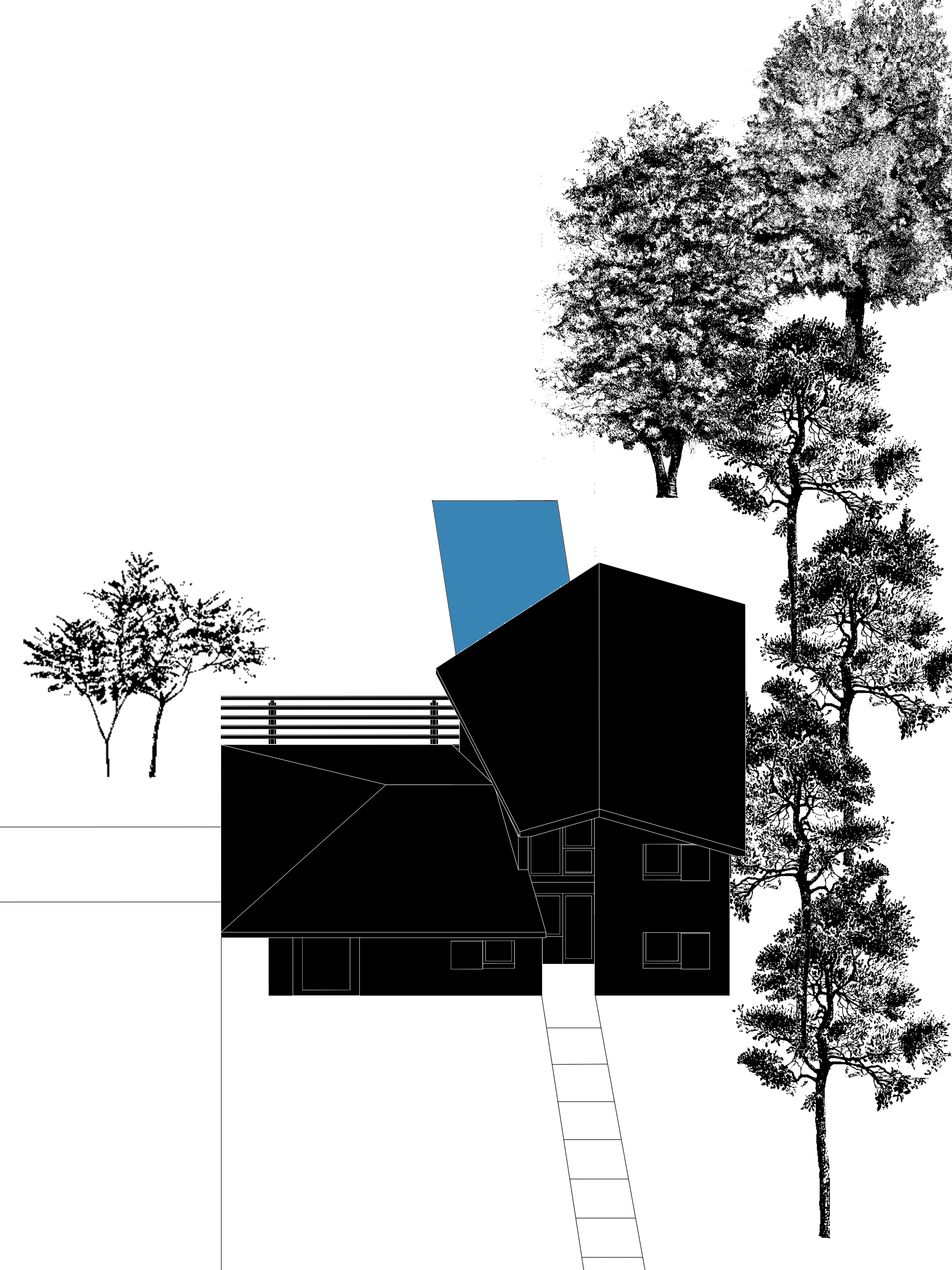 con alberi e piscina.jpg