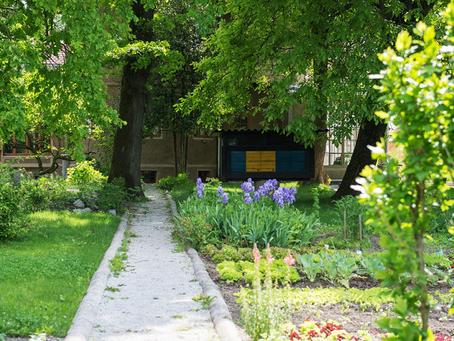 I felici incontri nel giardino di casa