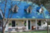 blue roof.jpg