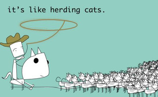 The Herding of Cats, Cows, and Sheep