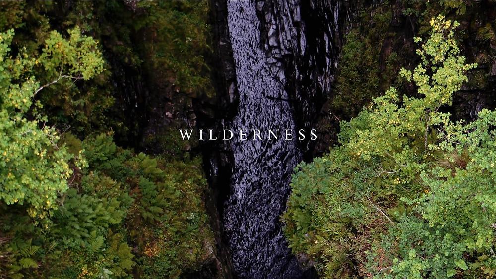 Wilderness image