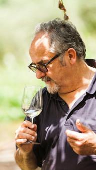 Degustazioni di Vino e Olio