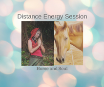 distance energy session horse and soul c