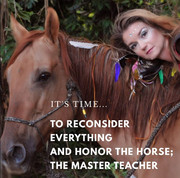 Honor The Horse Reconsider Everything.jp