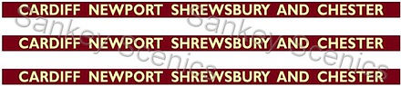 7Web Pic BR Western Card New Shrews Ches