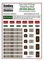 2 mm Scale Devon Belle.jpg