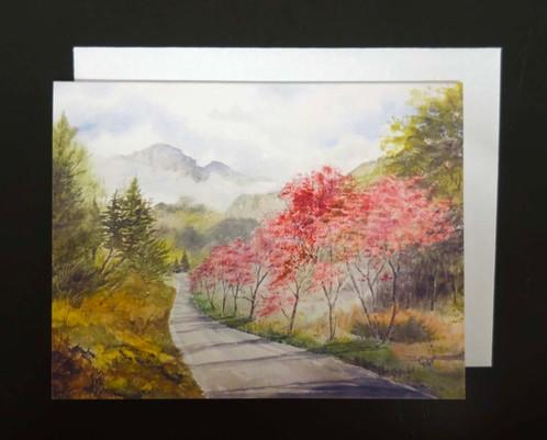 Landscape Note Cards (8)_2
