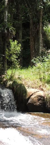 Cachoeira, dentro do sitio