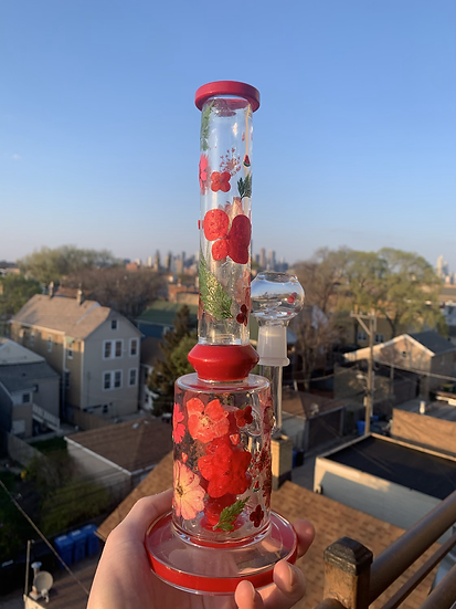 Rosy Red Rig ❣️