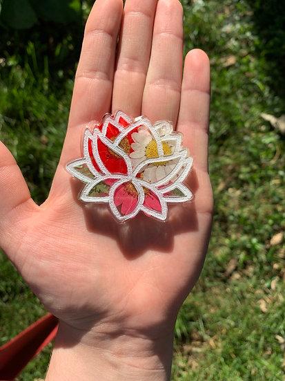 Daisy Lotus Flower