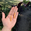 Thumbnail: French Baguette Dangles