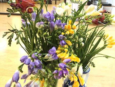 素敵なお花が🌼