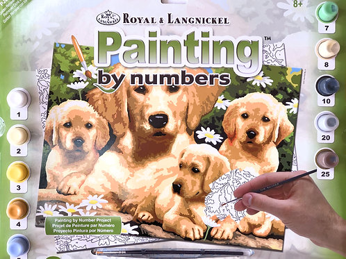 Painting by Numbers - Golden Retriever with Puppies