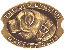 mastiff logo 1_edited_edited.png