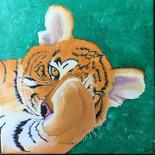 Peekaboo Tiger