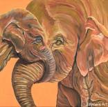 Hey Mum - Elephants Cuddles