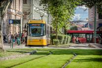 Szeged tram train