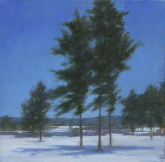 Seasons Series: Winter (Under a Duke Blue Sky)