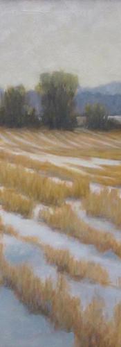 3 Farr Winter Field web.jpg
