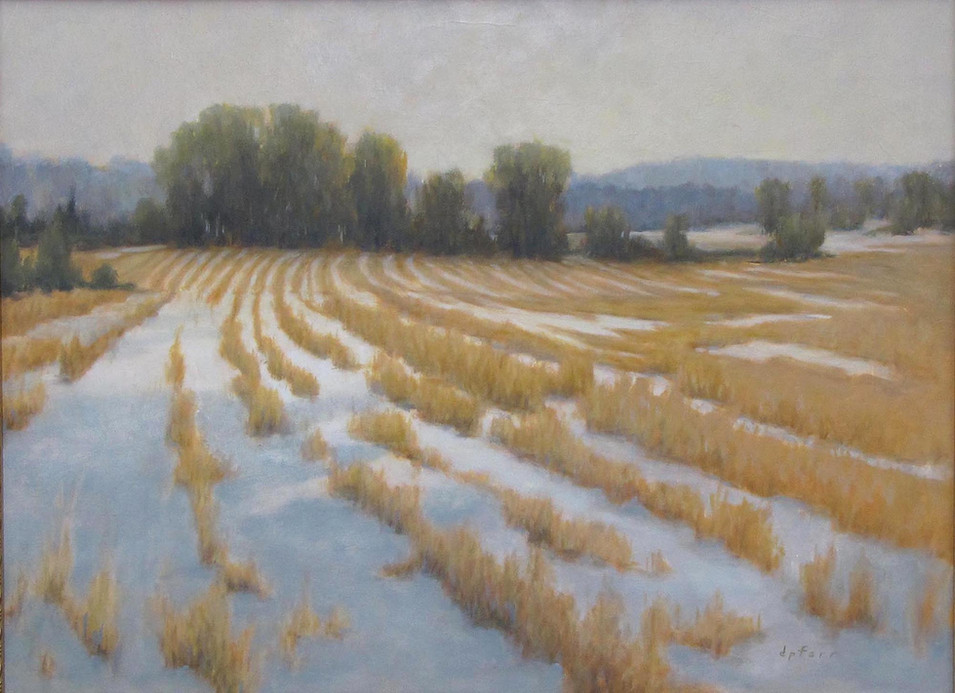 Winter Field  18x24