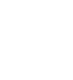 fusion wht.png