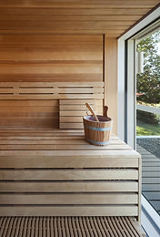Sauna di legno