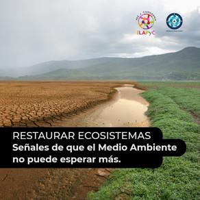 Restaurar ecosistemas: señales de que el Medio Ambiente no puede esperar más.