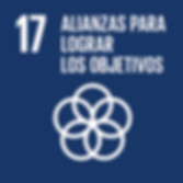 S_SDG goals_icons-individual-rgb-17.png