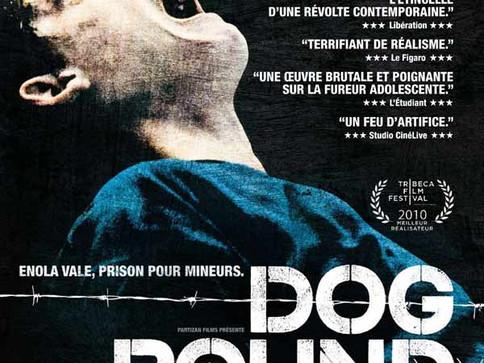 """""""Dog Pound"""" vu par Amandine Bamaca"""