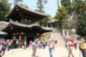 宮島追悼登山16.jpg