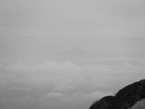 八ヶ岳HP0510.jpg