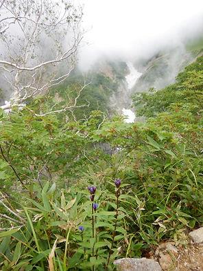 五竜岳HP08.jpg