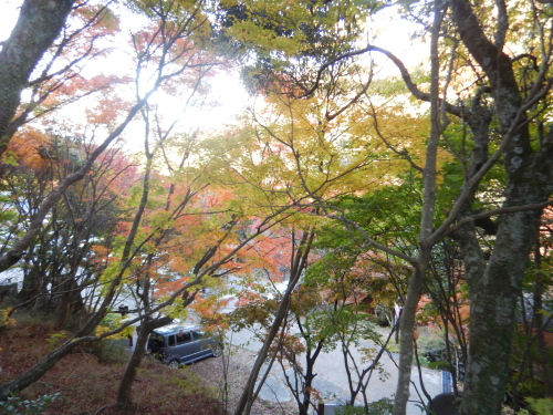 小豆島19.jpg