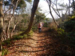 茶臼山HP05.jpg