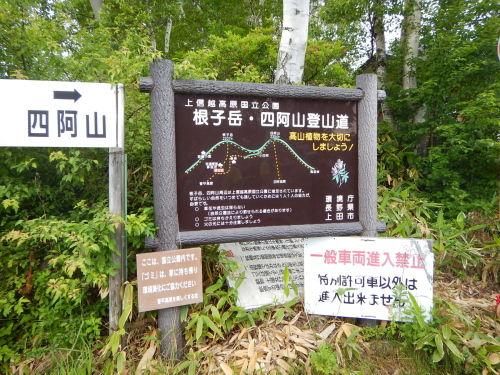 2019坂口登山08.jpg