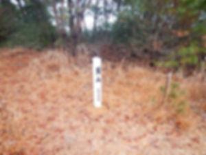 霜降岳06.jpg